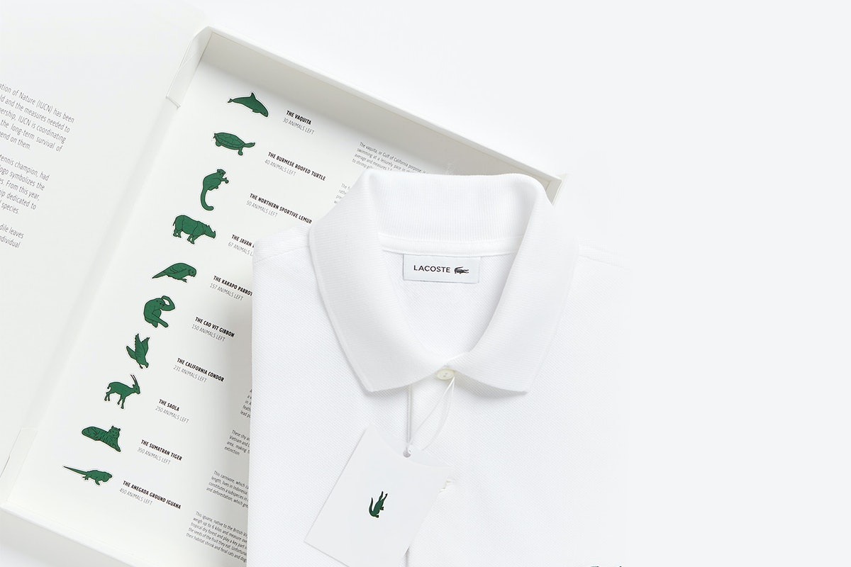 White Lacoste Polo with turtle logo placed on a box that displays all the threatened species Lacoste used in its limited edition collection